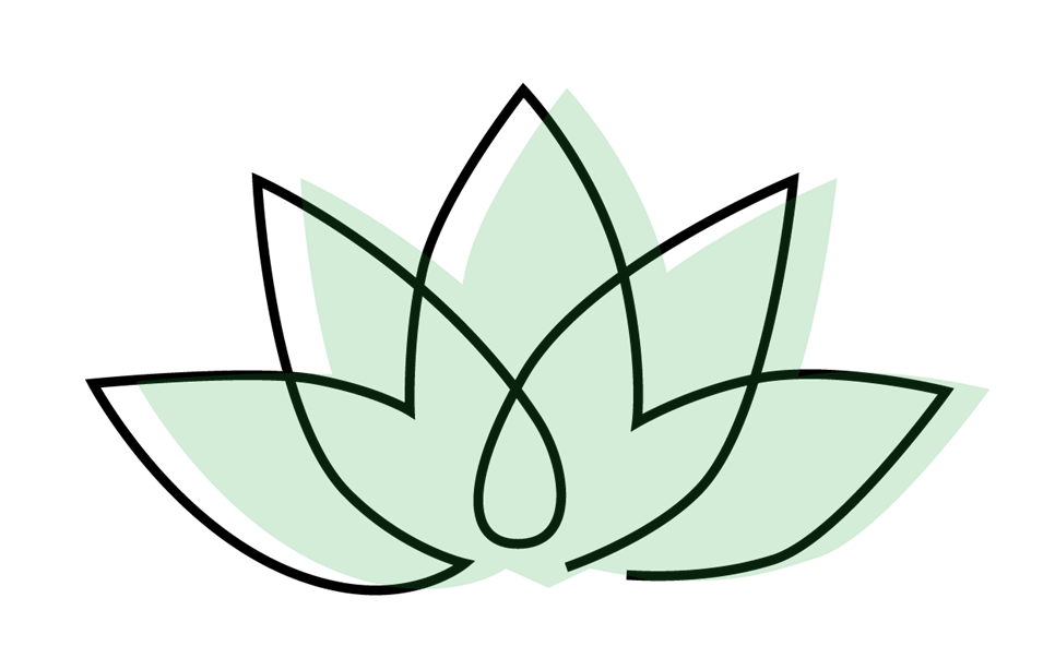 Lotus plant article illustration